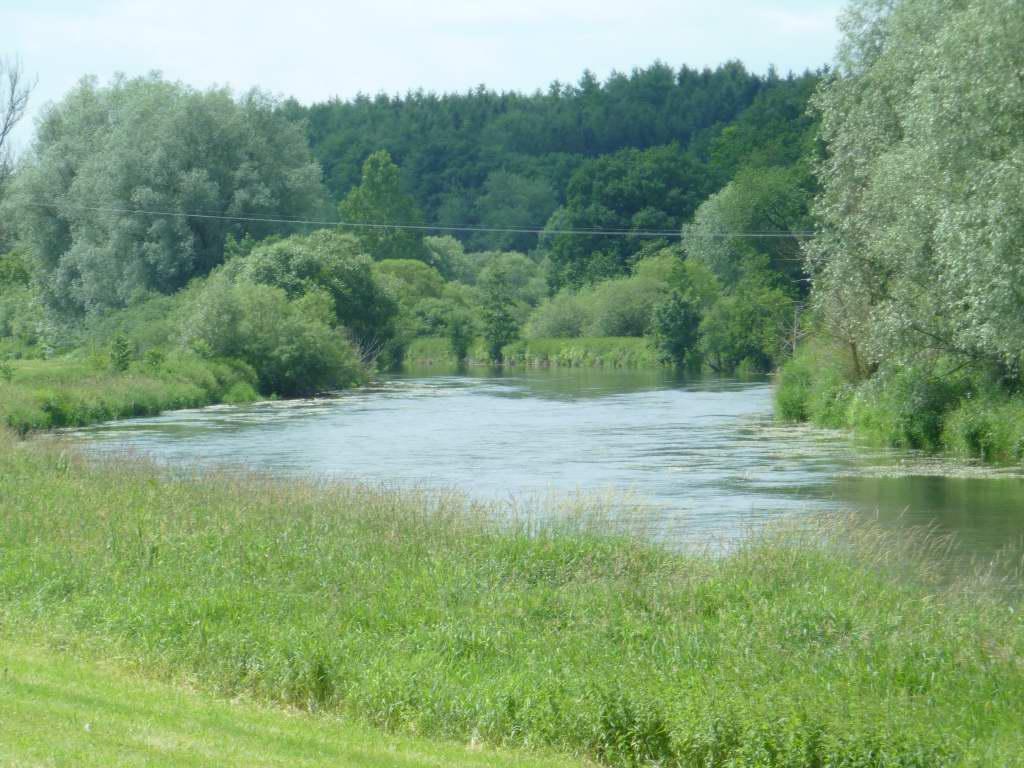 Wunderschöne Donau-Auenlandschaft!