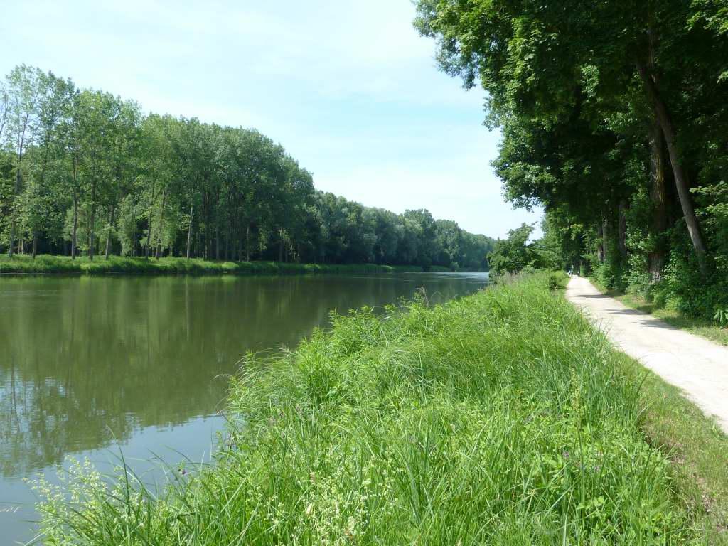 An der Donau!