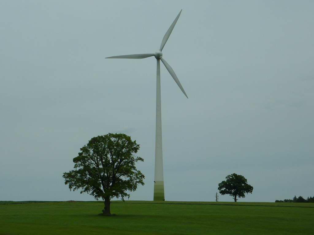 Wind-Turbinen!