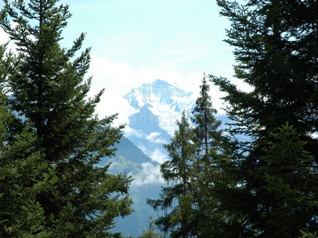 Schweiz, Interlaken - Jungfrau